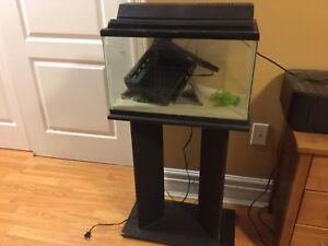 Aquarium with hood, stand, filter and filter refills