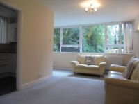 SPACIOUS ONE BED GROUND FLOOR FLAT WITH SHARED GARDENS