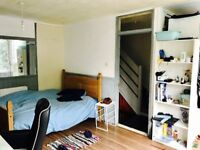 Very large double room in a nice flat