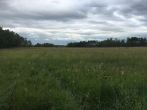 Hunting Land for Sale