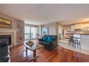 Penthouse 2 bed 2 bath condo for rent Sept 1st