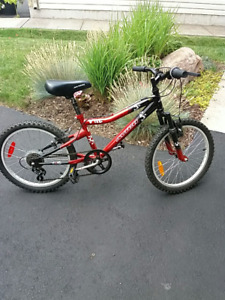 "20""  Avigo Mountain Bike"