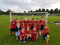 GOALKEEPER WANTED, School year 6