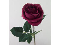 Romantic Long-Stemmed Roses - Burgundy/Wine Red (Quantity: 5)