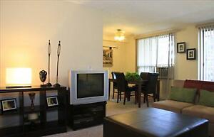 2 bedroom apartment for rent minutes to downtown!
