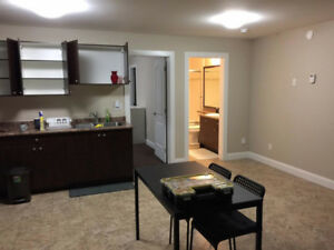 Furnished 1 bedroom basement suite