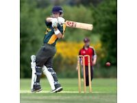 Talented Cricketer WANTED Need Great cricket player for TOP LEAGUE Premier Division overseas Pro