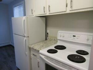 Recently Renovated Unfurnished 2 Bedroom 1 Bath