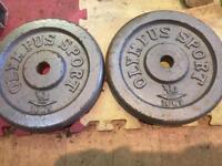 2 x 10kg cast weight plates