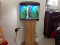 Corner fish tank including filter, heater & stand