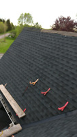 Need a new roof before winter comes ? Cheap rates and great work
