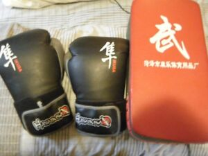 Hayabusa 12 oz boxing gloves