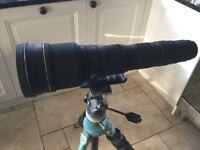 Sigma lens 300 - 800 mm lens Canon fit