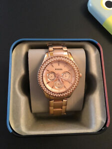 Beautiful Fossil Watch