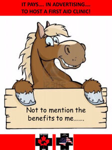HOST AN EQUINE FIRST AID CLASS – GET FREE ADVERTISING!