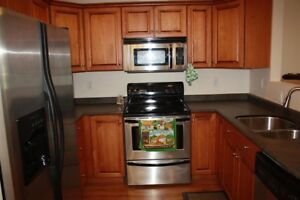 Furnished 2 bedroom  apartment  in Brewery District!!