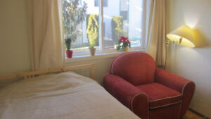 Share small Apartment Downtown, private bedroom