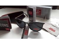 FREE DELIVERY TODAY! LADIES RAYBANS SUNGLASSES WOMENS garden