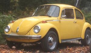 Classic Super VW bug