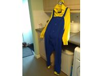 Ladies or mens minion all in one