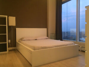 Fully Furnished New One Bedroom Condo in the Ice District
