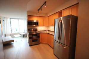 Bachelor Condo For Rent! LAKE VIEW! Queens Quay and Bathurst.