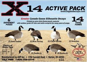 Hunting decoys goose and duck