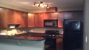 DOWN TOWN 3-BED ROOM, 2 BATH FULLY FURNISHED EXECUTIVE SUITE
