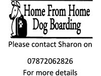 Home from Home dog boarding in Blackpool