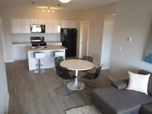 Beautiful Newer 1 Bdrm w/ In-Suite Laundry & A/C in Fort Sask