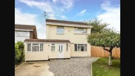 3/4 Bed Semi detached house - Liden- fully furnished