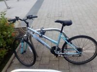 Adult female bike for sale with combination lock