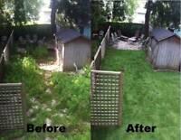 Free Estimates - Independent Landscaping Service
