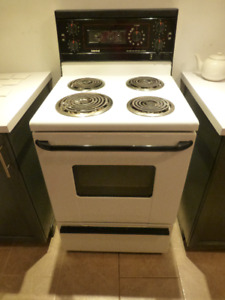 24 inch Electric Stove with Hood