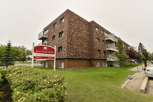 Great 1 bedroom apartments available now! Edmonton Edmonton Area image 1