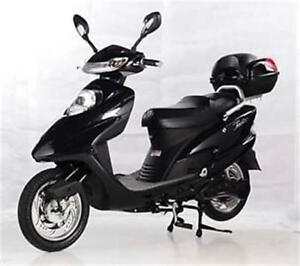 New Full Size Electric Scooter $799.99! No Liscense or Insurance