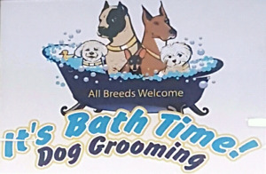 It's Bath Time! Dog Grooming