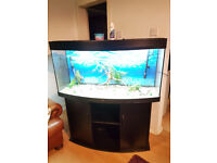 4ft JUWEL VISION 280 LITER BOW FRONTED FISH TANK AND STAND FOR SALE,,FULL SET UP