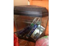55L Corner Fish Tank Mint Condition!