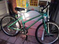 Two very good Raleigh mountain bikes