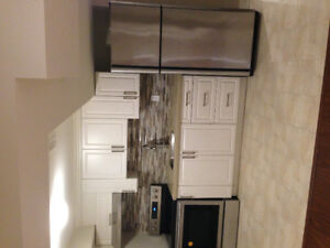 1 bedroom basement apartment, with modern kitchen , living room.