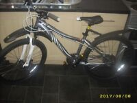 """Specialized Myka HT Sport Disc Girls/ Womens Ladies Mountain Bike 15"""" Frame Used Once As New"""