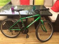Raleigh Child's unisex bike 24 inch frame good condition