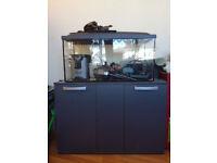 25 gallon aquarium complete set up with Tetra EX 600 external filter + cabinet + accesories