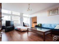 Superb, huge, private, Zone 1 concierge apartment