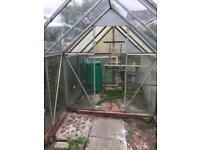 Plants glass house