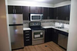1 Bedroom - Mins. from U of G - Behind Stone Road Mall!