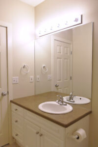 Bright, Newly Renovated 2-Bedroom Basement Suite for Rent