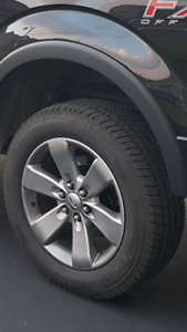 """20"""" fx4 rims and tires"""