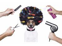 Dog Groomer/Kennel Maid